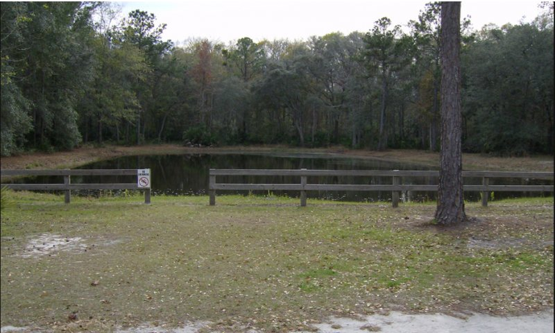 Indian forest campground st augustine fl for 1 acre pond design