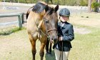 Black Forest Stables offers horse riding lessons in St. Augustine, Florida