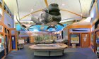 Enjoy the displays at GTM Research Reserve's Environmental Educational Center.