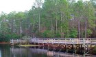 Treaty Park in historic St. Augustine has a large fishing pier for catch and release fishing!