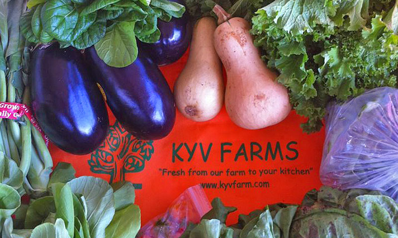 kyv farms produce 5x3