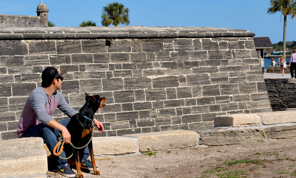 How Pet Friendly Is St Augustine Visit St Augustine