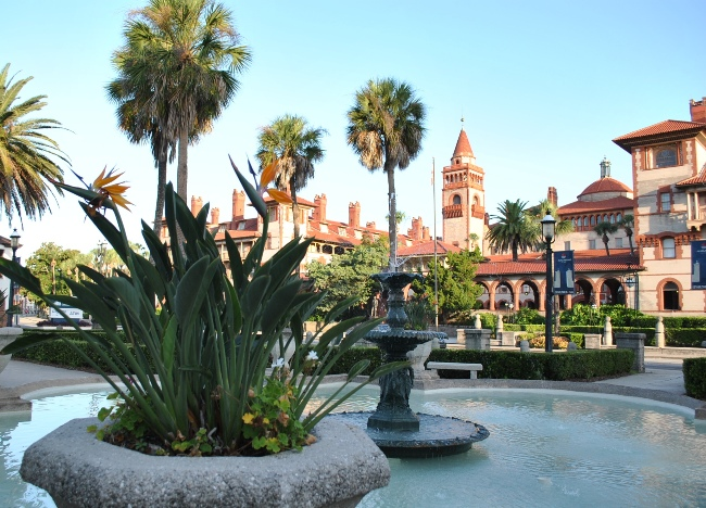 Birds of Paradise in front of Flagler College
