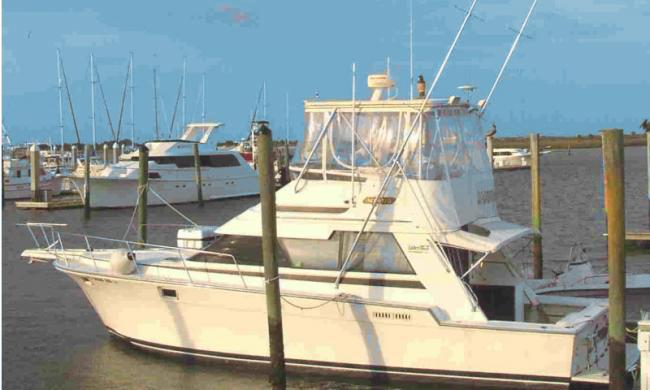 Blue water charter fishing st augustine fl for Deep sea fishing st augustine