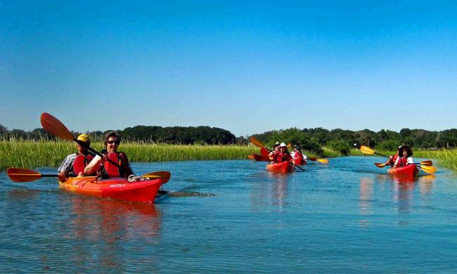 Hallowes Cove Historical Guided Kayak Tour   Visit St Augustine