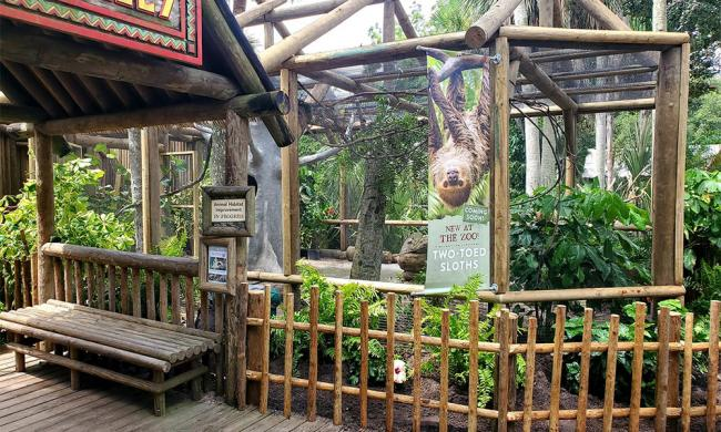 The St. Augustine Alligator Farm opens its new Sloth Exhibit.