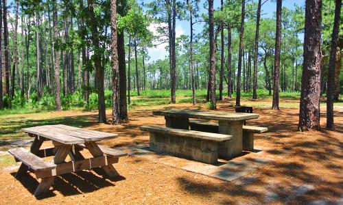 Top Rated Rv Amp Camping Sites Visit St Augustine