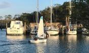 Fish Island Marina