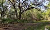 Deep Creek Conservation Area walking trails in Elkton