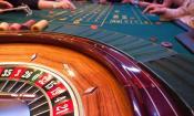 """Ayla's Acres No-Kill Animal Shelter will host its """"Casino Night"""" gala fundraiser."""
