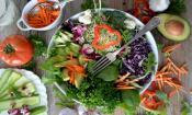 A hearty salad at Mio Organic Kitchen in St. Augustine, FL.