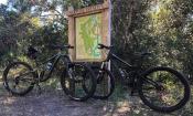 Nocatee Preserve and Mountain Bike Trail in Ponte Vedra, FL.