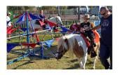 There's plenty of room for family activities like pony rides during the Rhythm 'n Ribs Festival at Francis Field,
